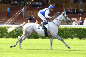 Prix d'Auxerre